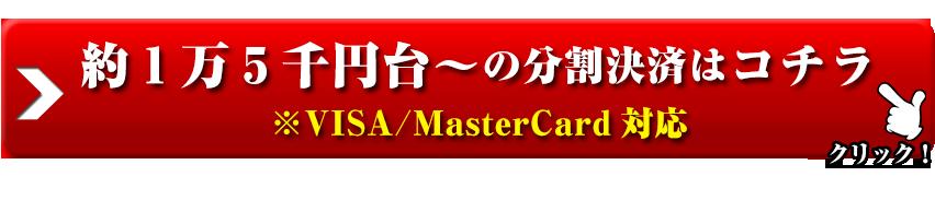 約1万5千円台~の分割決済はコチラ